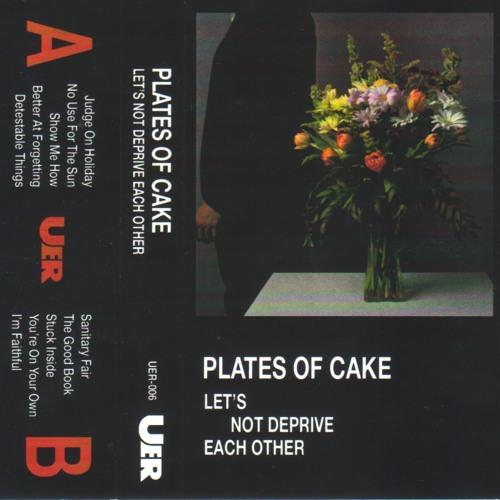 Plates of Cake - No Use For The Sun