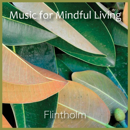 Music For Mindfull Living Snippets 90 sec