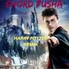 Harry Potter (DANCE-REMIX)