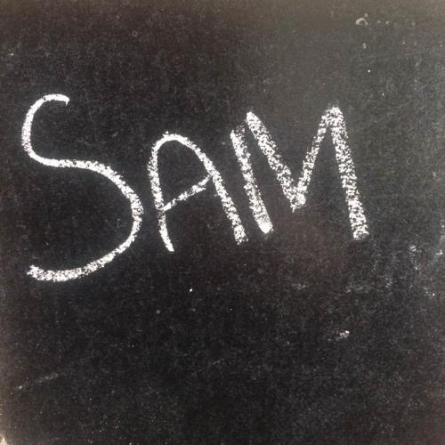 GBA 309 Sam