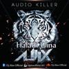 Haladi Gina Alex Remix