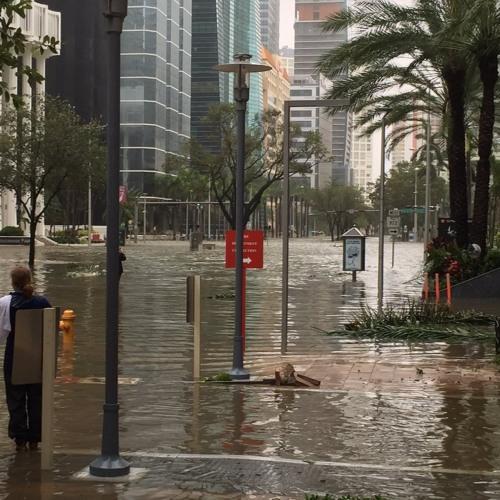 Miami Water Torture