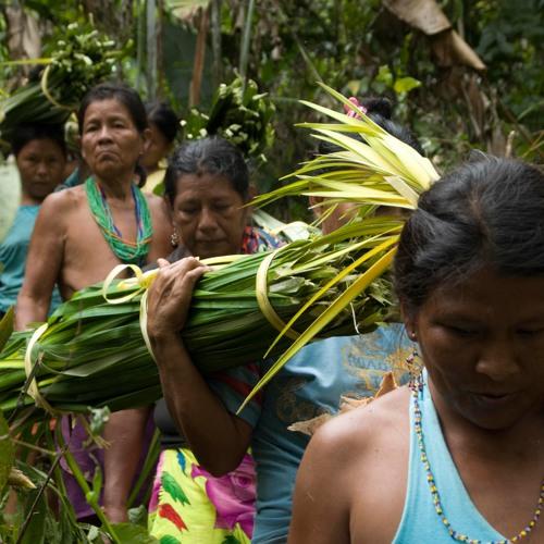 Mujeres que van adelante conservando los recursos de Panamá.