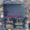 Oscillators On The Beach