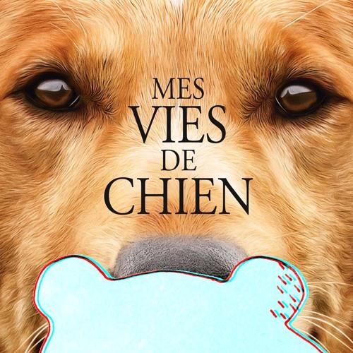 OZEF #01 - Oh my dog | Critique du film Mes vies de chien