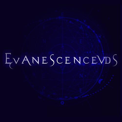 Evanescence - My Heart Is Broken Live