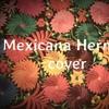 Mexicana Hermosa- Natalia Lafourcade ( cover)