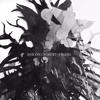 Anicon / Forest Of Tygers - Split 7