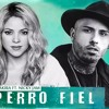 Shakira perro fiel mp3 Song download