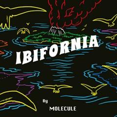 Cassius - Ibifornia (Molécule Remix)