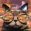 Skryonic - Cool Cats & Groovy Chicks
