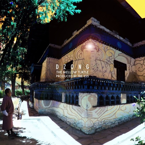 The Mellow Turtle - Dzong