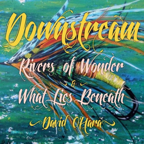 #81   Downstream: Rivers Of Wonder & What Lies Beneath w/ David O'Hara
