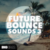 Future Bounce Sounds 3 | 460+ Oliver Heldens Style Sounds & Presets!