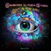 Shibass & Pura Vida - Light in your Eyes [Radio Edit]