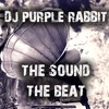 DJ Purple Rabbit - Vibe Machine Gelido Remix (Out soon on Beatport etc)