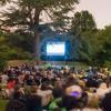 Streatham Free Film Festival