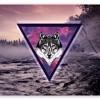 Getter - Inhalent Abuse(Spacewulf Remix)
