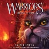 WARRIORS #4: RISING STORM by Erin Hunter
