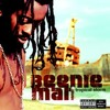 Beenie Man - I Like (The Way)