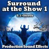 Surround At The Show 1 Demo