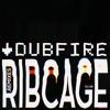 Dubfire - RibCage (Adrian Sherwood Remix)