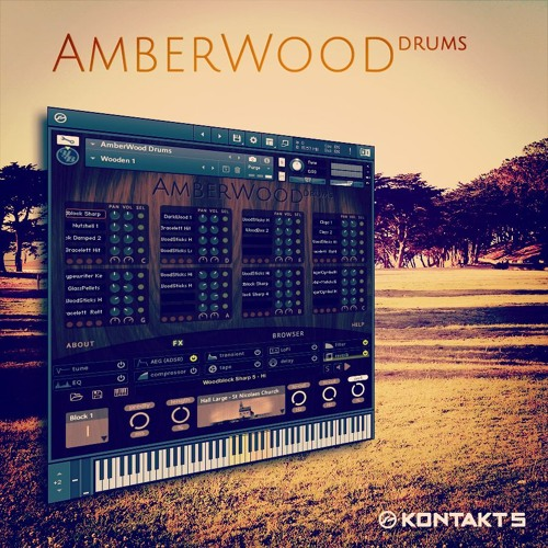 AmberWood Drums - Immerse (Trip Hop, Ambient, Atmosphere)
