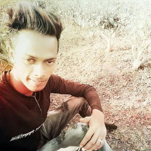 DDj Raja Vs exclusive. Sun Mere Humsafar. Chillout remix