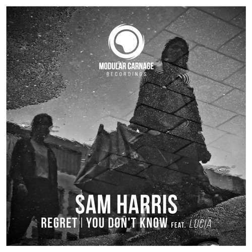 Sam Harris - Regret / You Don't Know (feat. Lucia)