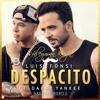 Luis Fonsi Ft. Daddy Yankee - Despacito  (Süleyman Kaya Balkan Remix)