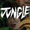 Käärkäsi - JungleTrap (Free Download) mp3