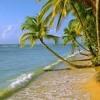 Ocean Front Property# 2
