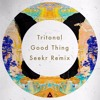 Download Tritonal feat. Laurell- Good Thing (Seekr Remix) Mp3