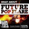 Future Pop Flare Bonus Pack Fl Studio Templates And More Mp3