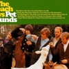 The Beach Boys - Don't Talk (Put Your Head on My Shoulder) - Cover