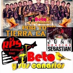 DJ RPS  MIX BETO Y SUS CANARIOS (POR TODO TIERRA CALIENTE)
