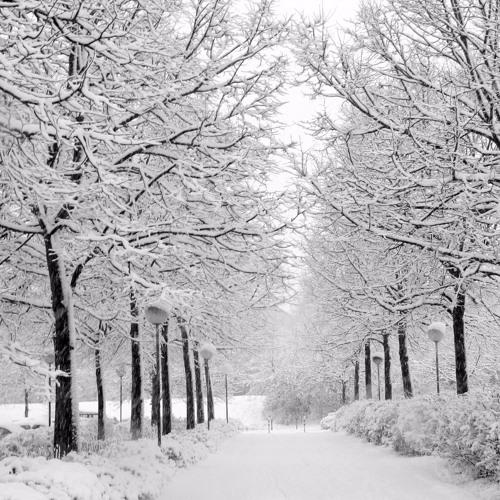 A Matteri - Snowy Night