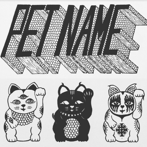 Pet Name