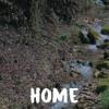 Home - Passenger (Cover)