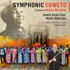 Grammy award winning Wouter Kellerman on Symphonic Soweto