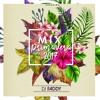 DJ Faddy - MIX PRIMAVERA 2k17