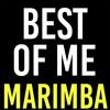 Best Of Me Marimba Ringtone - BTS