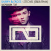 Shawn Mendes - Stitches (SeeB Remix) NioManiak Edit
