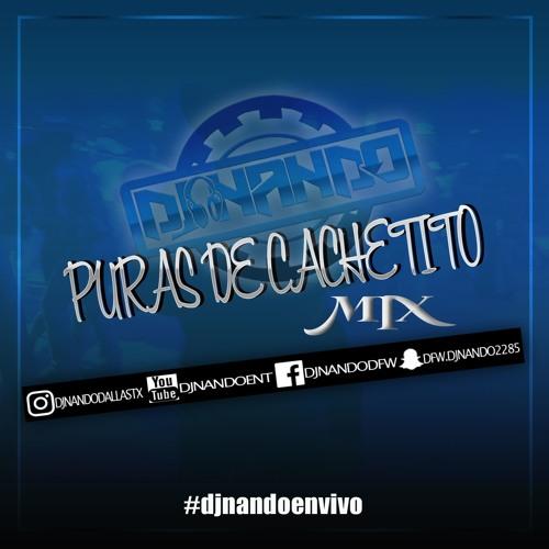 PURAS DE CACHETITO DJ NANDO