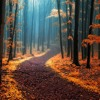 Milo Häfliger   Propulsion of Autumn [014]