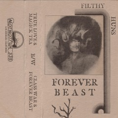 """Filthy Huns """"Forever Beast"""""""