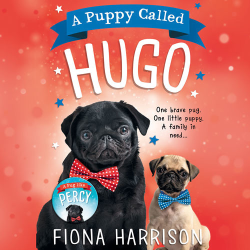 A Puppy Called Hugo, By Fiona Harrison, Read by Huw Parmenter