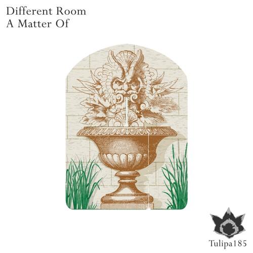 Different Room - Matter Of Moments (Original Mix)