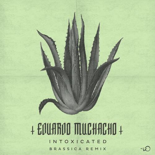 Eduardo Muchacho - Intoxicated (Brassica Remix)