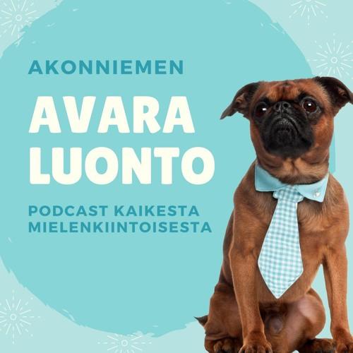 #4 Sami Honkonen